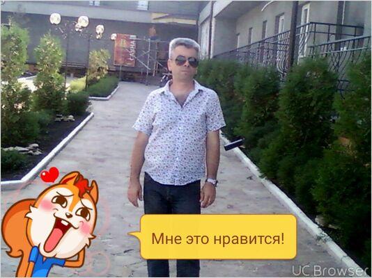 ���� ������� vladimir, ���������, �������, 42