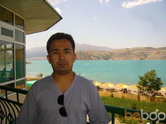 ���� ������� Kamol, �������, ����������, 32