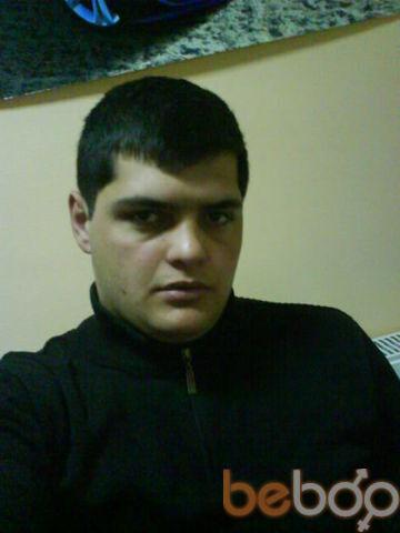 ���� ������� koegio, �������, ������, 26